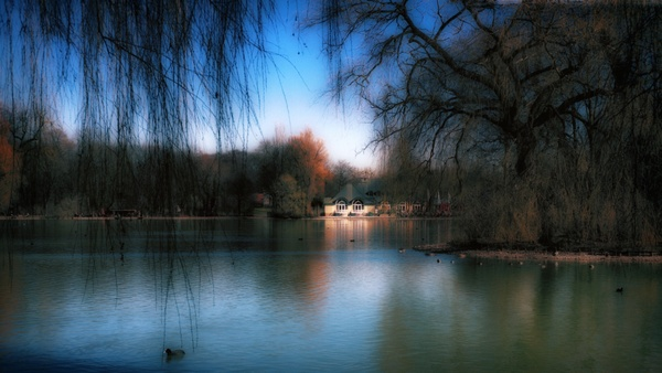 >>Englischer Garten.<<