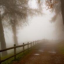 ...Licht im Nebel...