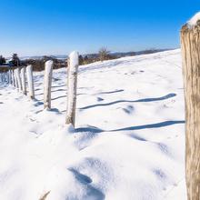 der Schneetag in 2014