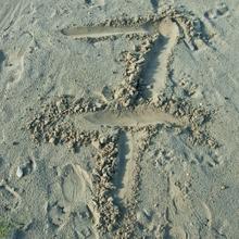 Sieben im Sand