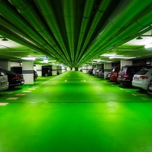 ist das alles schön grün hier...