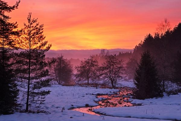 Sonnenuntergang am Hochmoor