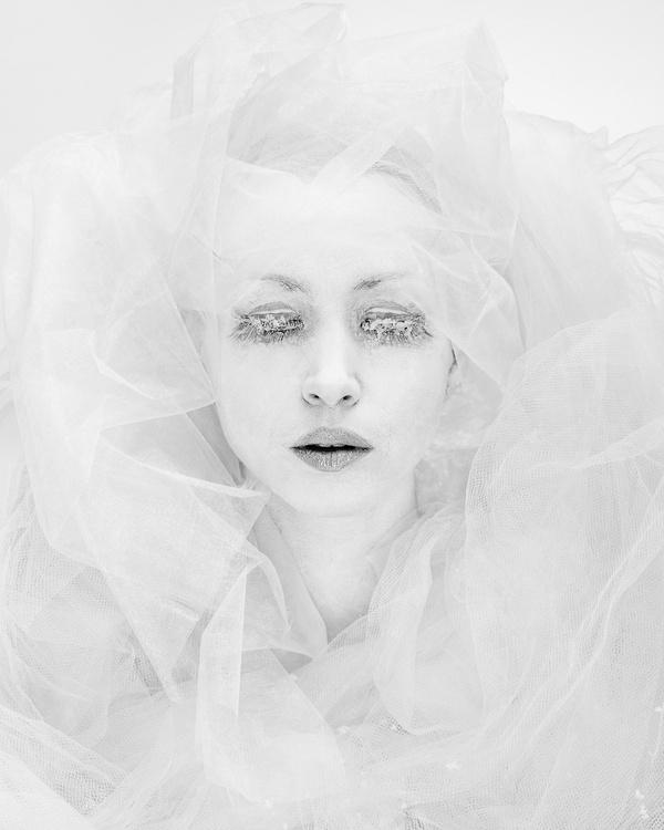 Iris in Weiß
