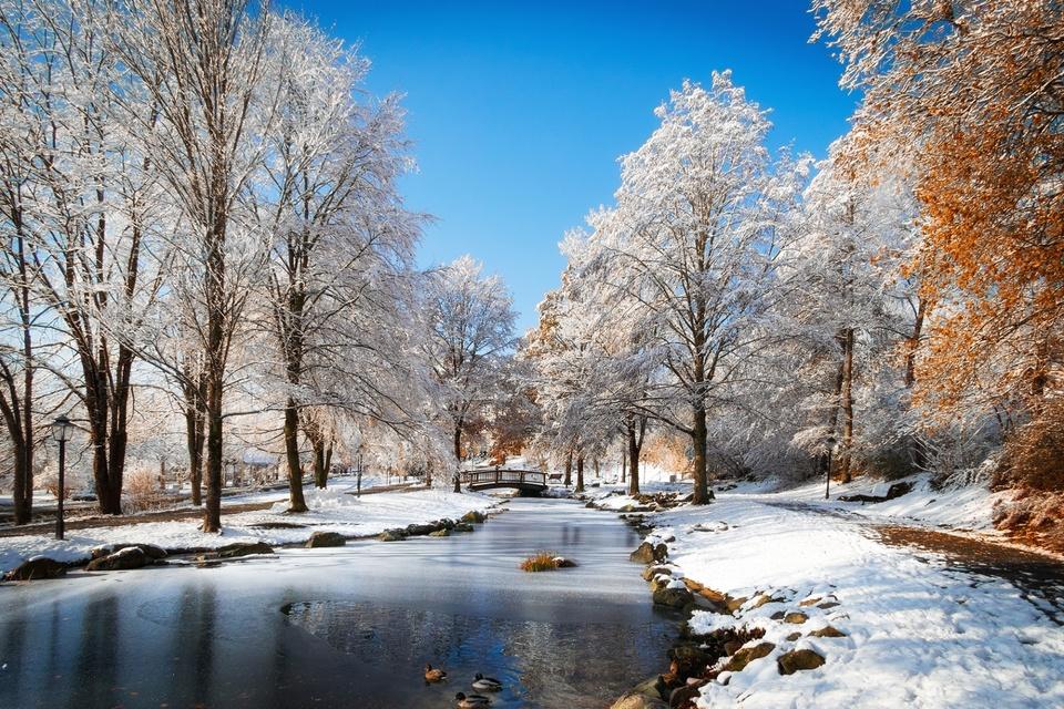 Erster Schnee in Bodenmais