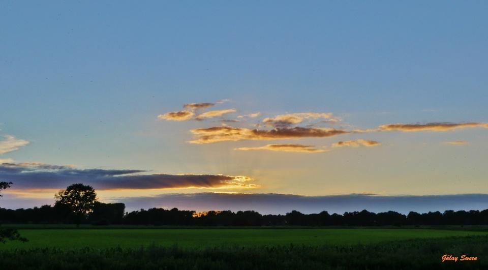 Sonnenuntergang im Grünen
