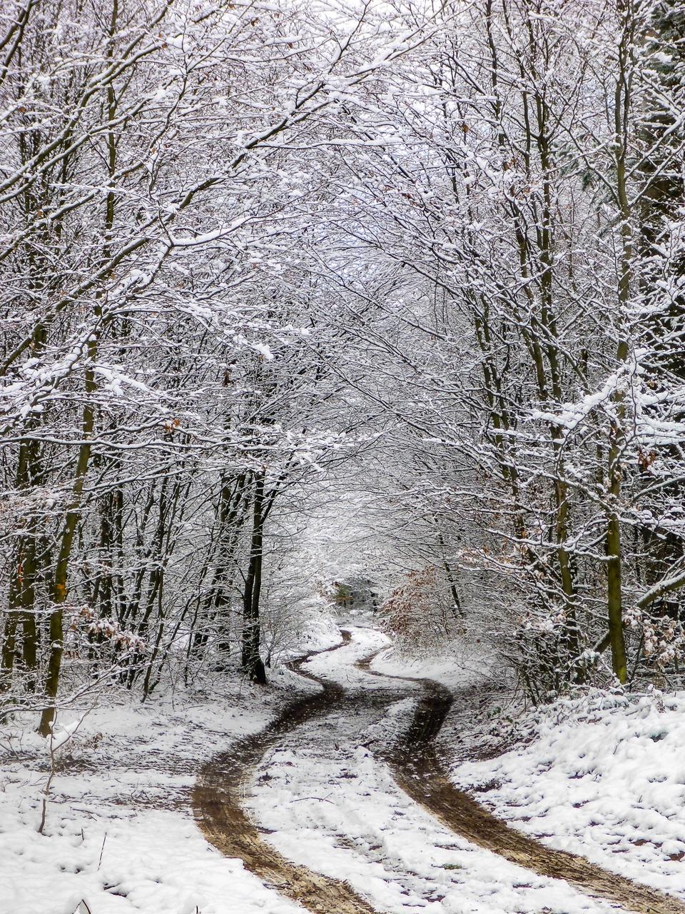 Winterpfad