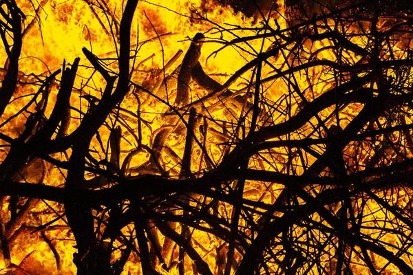 Burning the winter