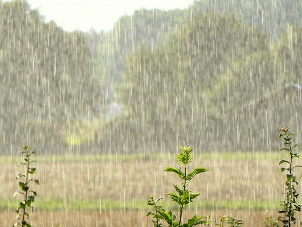 Es regnet Bindfäden