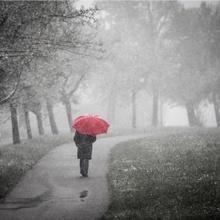 Der rote Schirm...