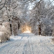 Nach dem Schneegestöber bricht die Sonne durch