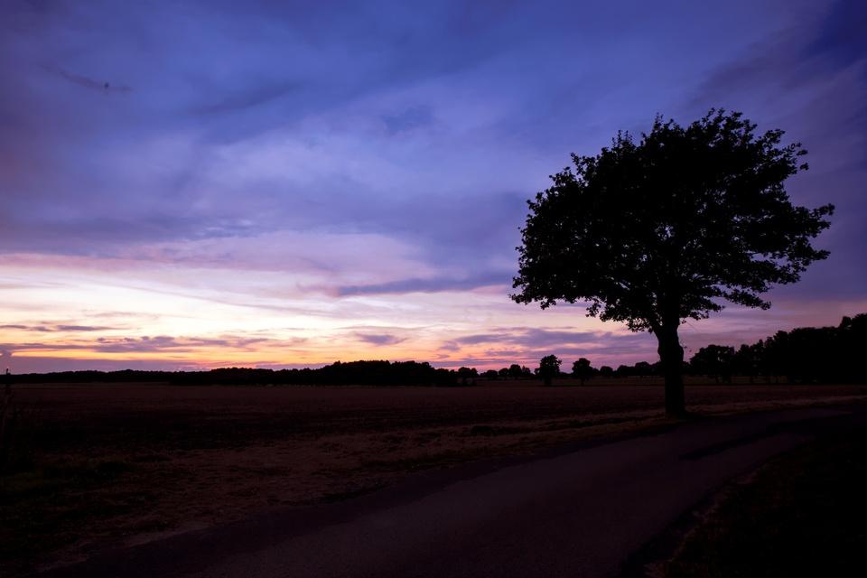 Sonnenuntergang am Flughafen Hannover