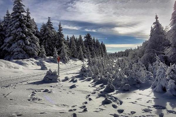 Harz Winterwanderung