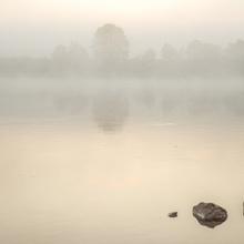 Donau im Morgennebel