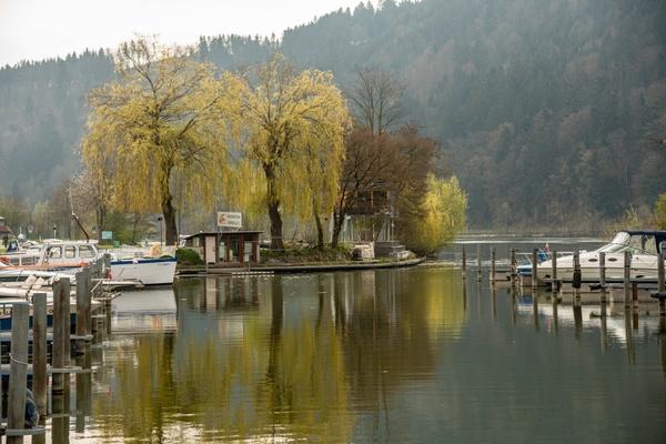 Morgendunst an der Donau