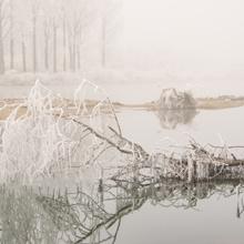 Nebelstimmung am Fluß
