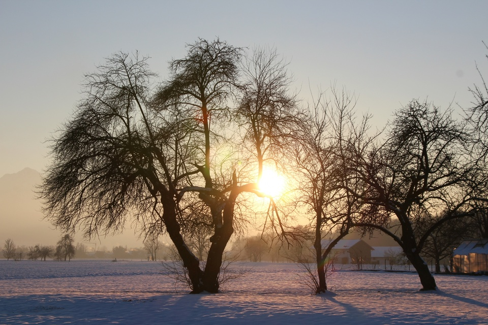 ABENDSONNE IM WINTER