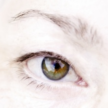 Der Blick