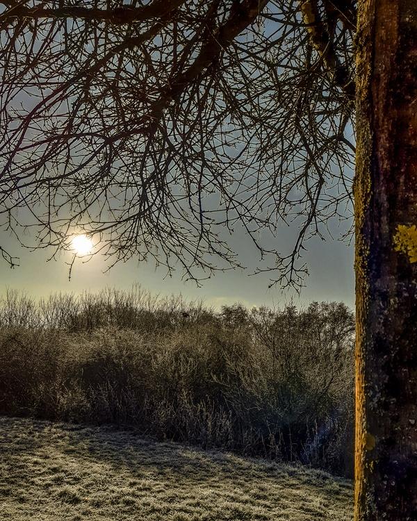 an einem frostigen Januarmorgen