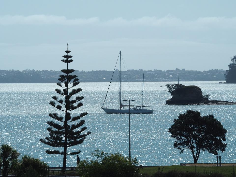 Mein Boot, mein Strand, mein Baum