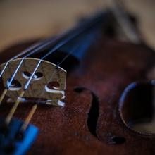 Meine Geige
