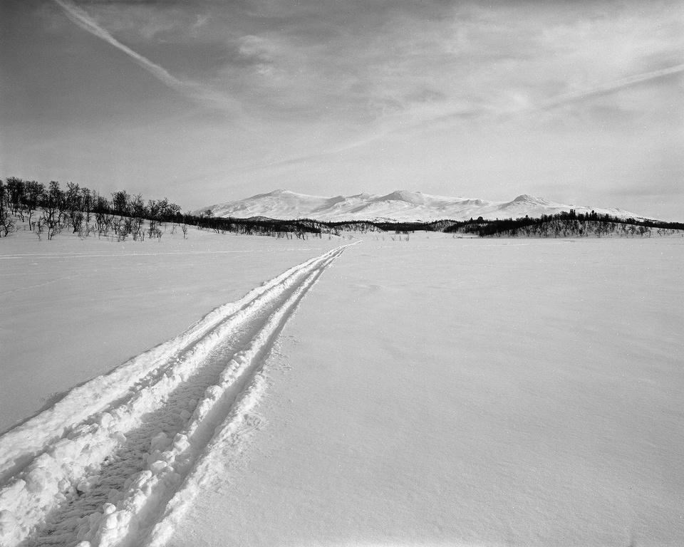 Schneelandschaft in Schwarzweiß