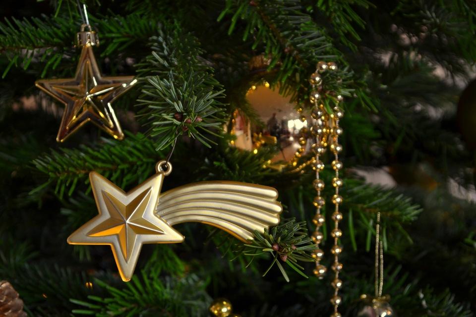 Mein Weihnachtsstern