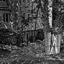 Bretter, die den Baum beschützen
