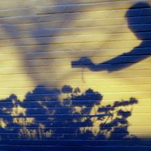 Der Schatten des Fotografen