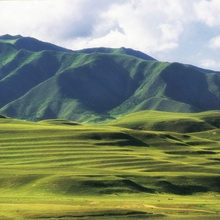 Labrang China... sanfte, grüne Hügel