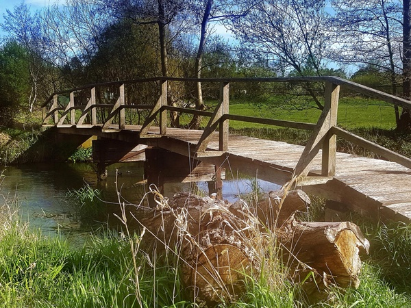 Bridge over ...calm water